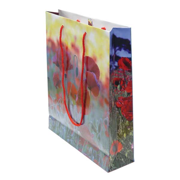 Laminated Exhibition Bag