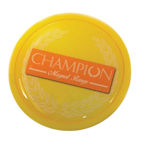 Champion Range Fridge Magnet