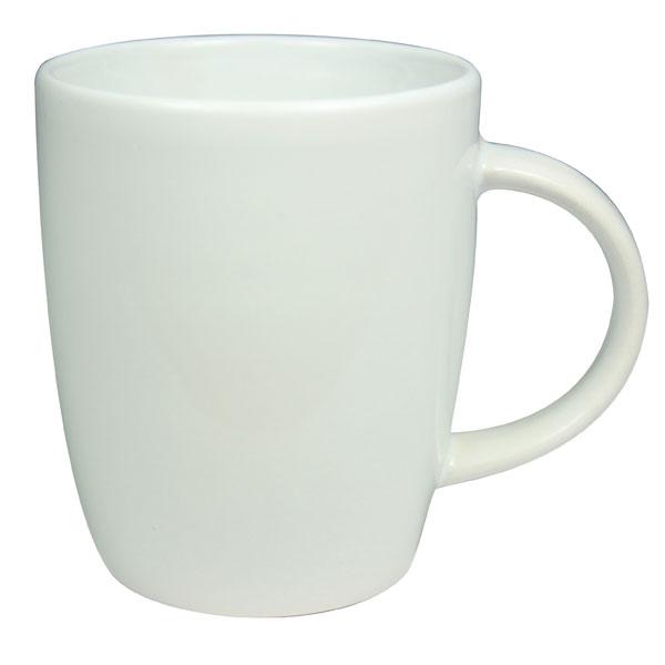 Darwin Mug