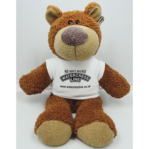 15 Inch Buster Bear with T..